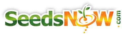 SeedsNow.com Logo